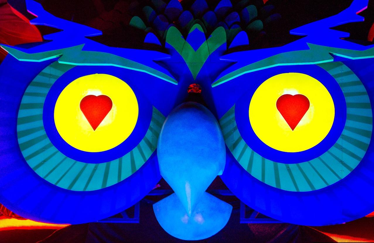 Owl Eyes EDC