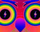 Under the Electric Sky Owl Eyes