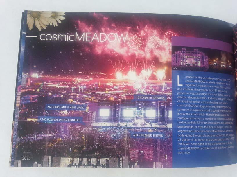 EDCLV 2014 Box Book Inside 5 Cosmic Meadow