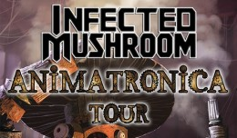 infected-mushroom-tickets_07-03-15_17_555be223c7e40