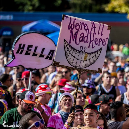 Beyond Wonderland Bay Area Totems: Hella, We're All Mad Here